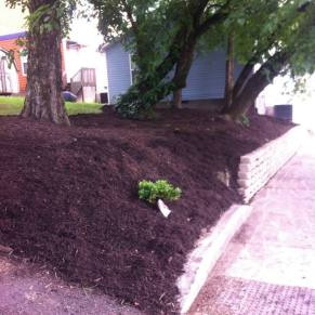 After - retaining wall built and mulch the area